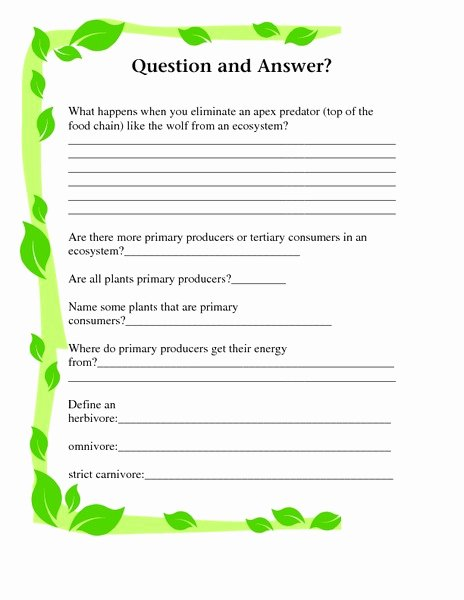 Producers and Consumers Worksheet Beautiful Producers and Consumers Question and Answer Worksheet