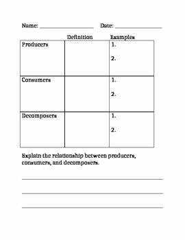 Producers and Consumers Worksheet Fresh Producers Consumers & De Posers Worksheet by Creating