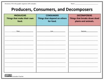 Producers and Consumers Worksheet Fresh Producers Consumers De Posers Graphic organizer by