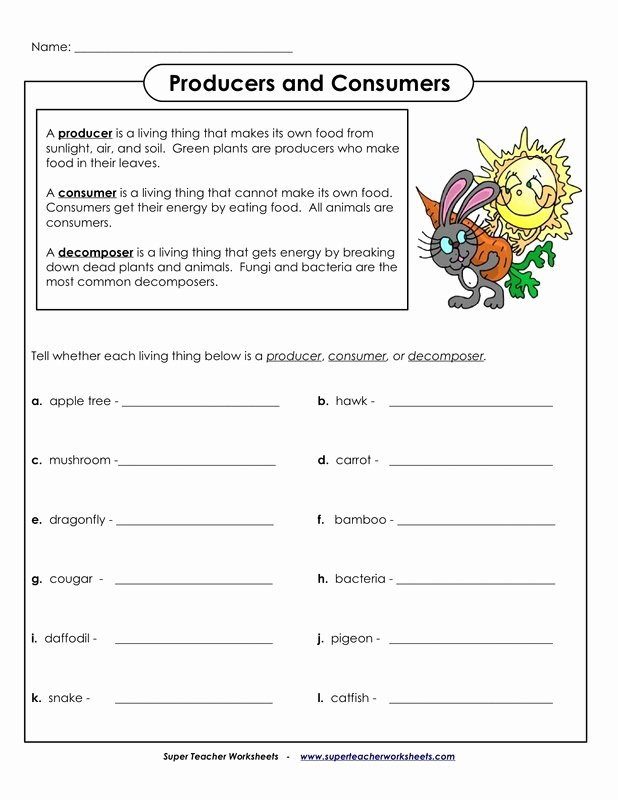 Producers and Consumers Worksheet Unique Worksheets Allie Maloney S Edug 812 Website