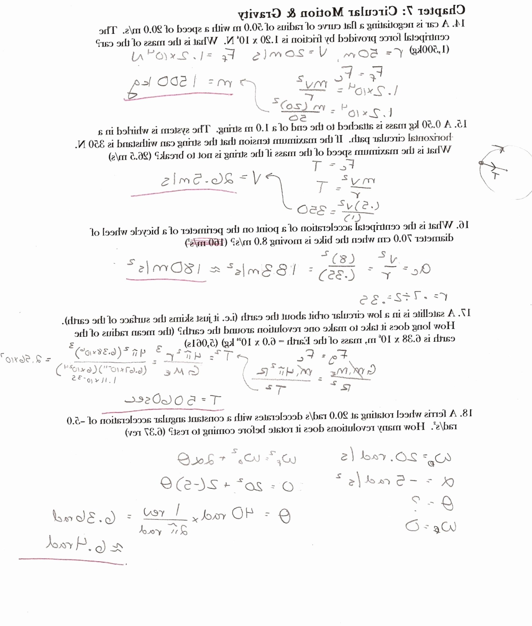 Projectile Motion Worksheet Answers Unique Carbon Cycle Worksheet Answer Key