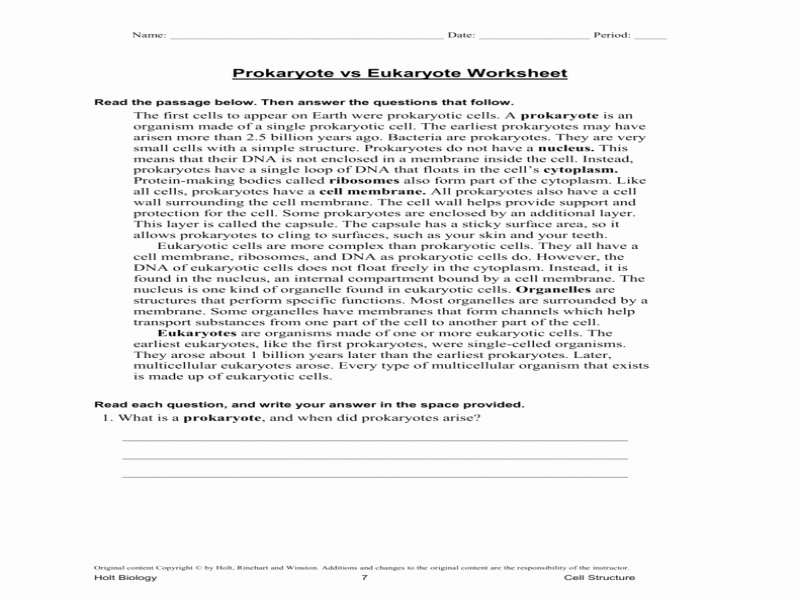 Prokaryote Vs Eukaryote Worksheet Beautiful Answers Prokaryotic Vs Eukaryotic Venn Diagram Youtube