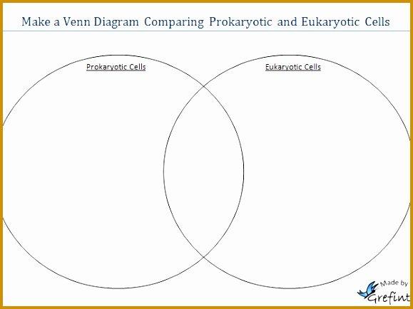 Prokaryotes Vs Eukaryotes Worksheet Awesome 3 Prokaryote Vs Eukaryote Worksheet