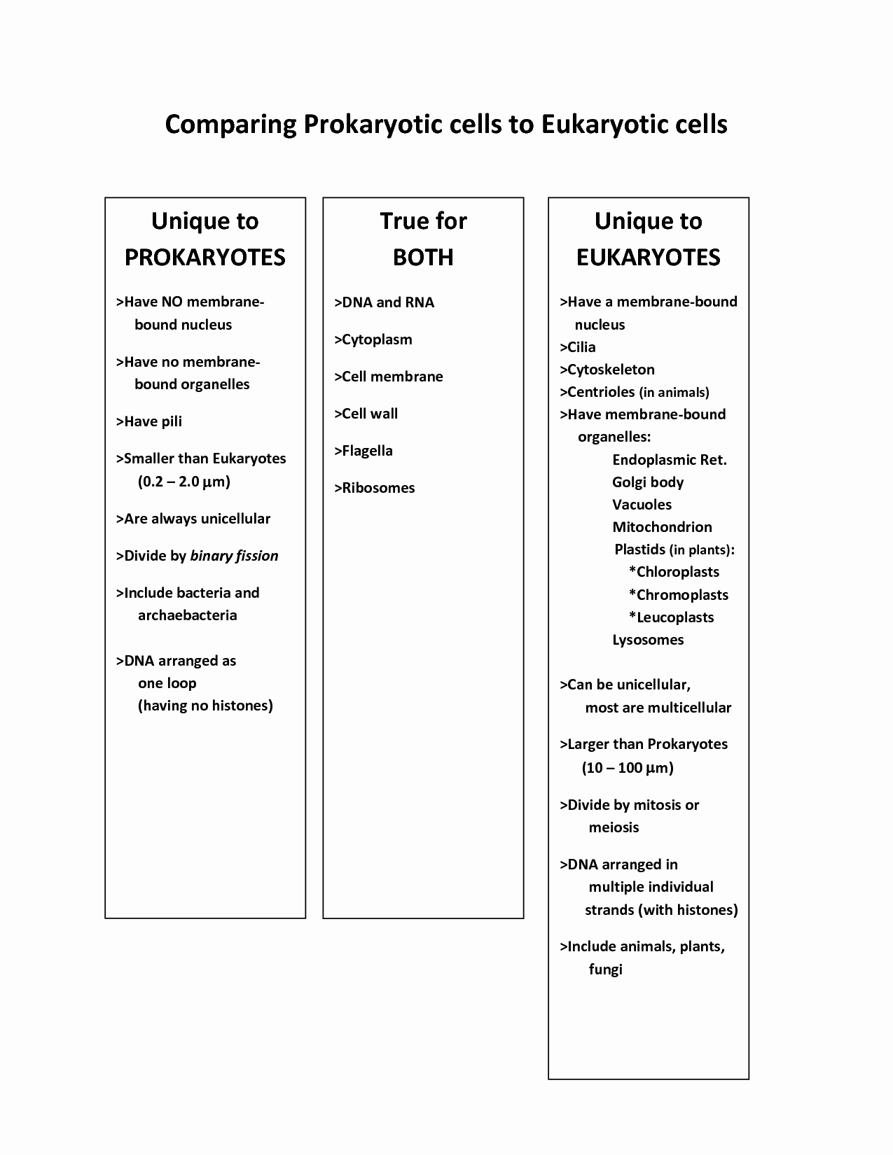 Prokaryotic and Eukaryotic Cells Worksheet Luxury 14 Best Of Paring Dna and Rna Worksheet