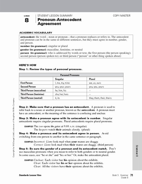 Pronoun Antecedent Agreement Worksheet Best Of Pronoun Lesson 6th Grade