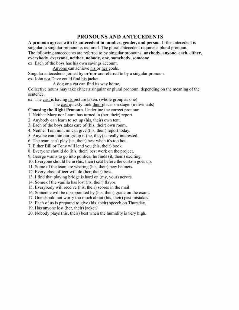 Pronoun Antecedent Agreement Worksheet Fresh Pronoun Antecedent Agreement Worksheet 2c