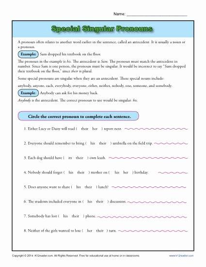 Pronoun Verb Agreement Worksheet Elegant Special Singular Pronouns