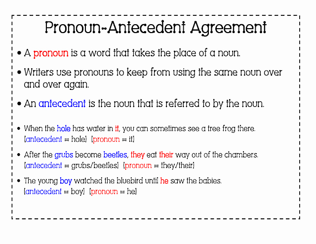 Pronouns and Antecedents Worksheet Unique 6th Grade English with Mr T Pronoun Antecedent