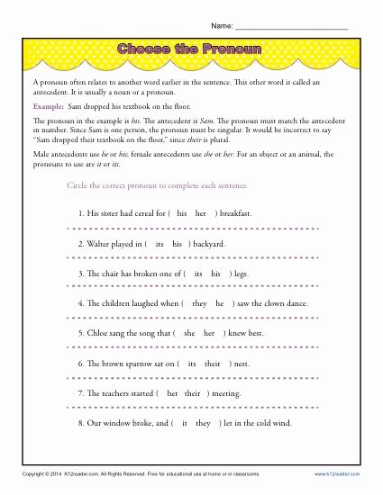 Pronouns and Antecedents Worksheet Unique Choose the Pronoun