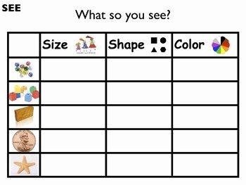 Properties Of Matter Worksheet Fresh Science Unit Properties Characteristics Of Matter with