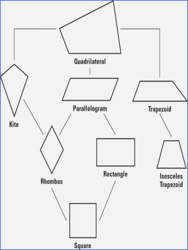Properties Of Parallelograms Worksheet Fresh Properties Parallelograms Worksheet