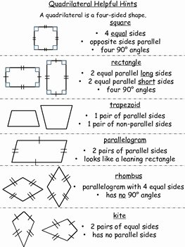 Properties Of Quadrilateral Worksheet Awesome Quadrilateral Helpful Hints and Worksheets by Riess Room