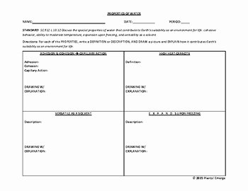 Properties Of Water Worksheet Best Of Properties Of Water Examples by Plants Emerge