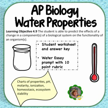Properties Of Water Worksheet Fresh Ap Biology Water Properties Review Worksheet and Essay