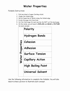 Properties Of Water Worksheet Inspirational Properties Of Water Worksheet
