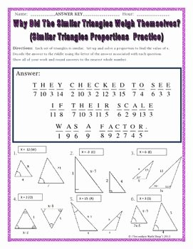 Proportions and Similar Figures Worksheet Luxury 78 Best Ideas About Proportions Worksheet On Pinterest