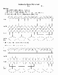 Protein Synthesis Review Worksheet Answers Beautiful 17 Best Of 9th Grade Worksheets Spelling Words