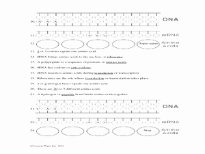Protein Synthesis Review Worksheet Answers New Protein Synthesis Worksheet 9th 12th Grade Worksheet