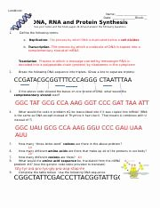 Protein Synthesis Worksheet Answer Key Elegant Worksheet Dna Rna and Protein Synthesis Keycx