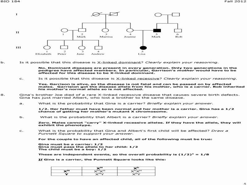 Punnett Square Practice Problems Worksheet Elegant Punnett Square Practice Worksheet Answer Key Free