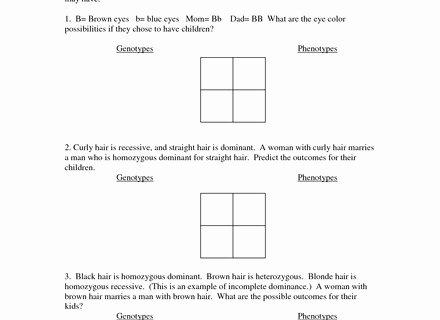 Punnett Square Practice Problems Worksheet Inspirational Blood Type Punnett Square Worksheet Secretlinkbuilding