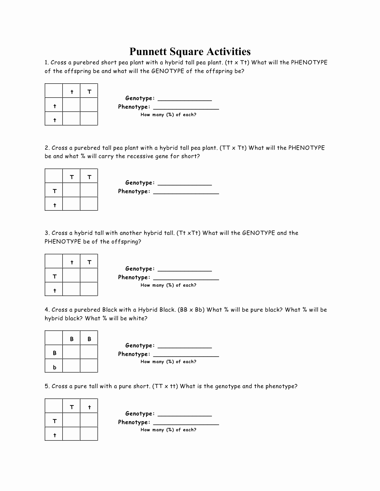 Punnett Square Practice Worksheet Answers Awesome 15 Best Of Punnett Square Worksheet Answer Key