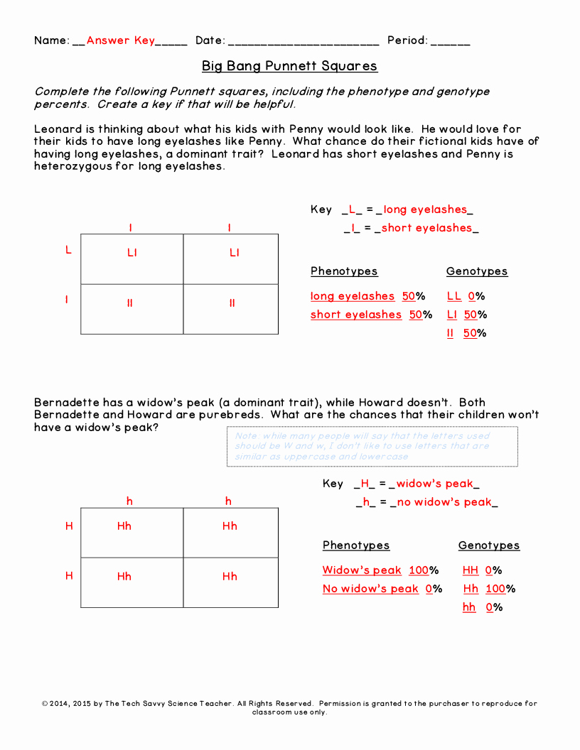 Punnett Square Practice Worksheet Answers Awesome 49 Punnett Square Practice Worksheet Worked Punnett