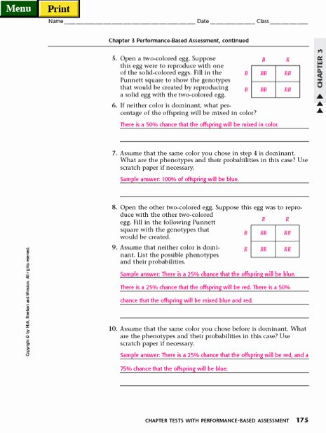 Punnett Square Practice Worksheet Answers Fresh Punnett Square Practice Worksheet