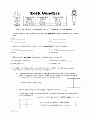 Punnett Square Practice Worksheet Answers Inspirational Punnett Square Worksheet Answers