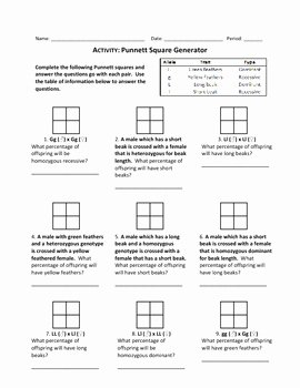 Punnett Square Practice Worksheet Awesome Punnett Square Generator Wo by Haney Science