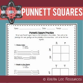 Punnett Square Practice Worksheet Awesome Punnett Square Practice Worksheet Ngss Aligned by