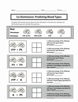 Punnett Square Practice Worksheet Beautiful Punnett Square Practice Co by Haney Science