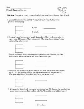 Punnett Square Practice Worksheet Beautiful Punnett Squares Worksheets and Practice by Dr Dave S