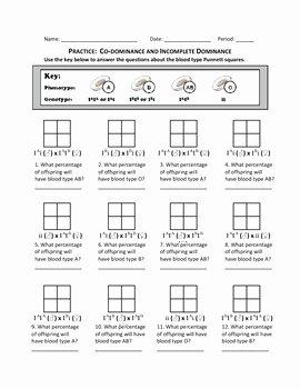 Punnett Square Practice Worksheet Best Of Punnett Square Practice Co by Haney Science