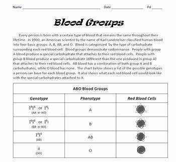 Punnett Square Practice Worksheet Elegant Genetics Blood Groups Punnett Square Practice by Spyglass