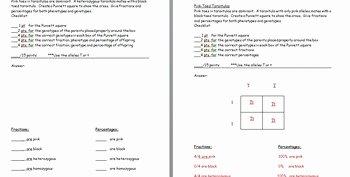 Punnett Square Practice Worksheet Elegant Punnett Square Practice Wor by the Science Lady