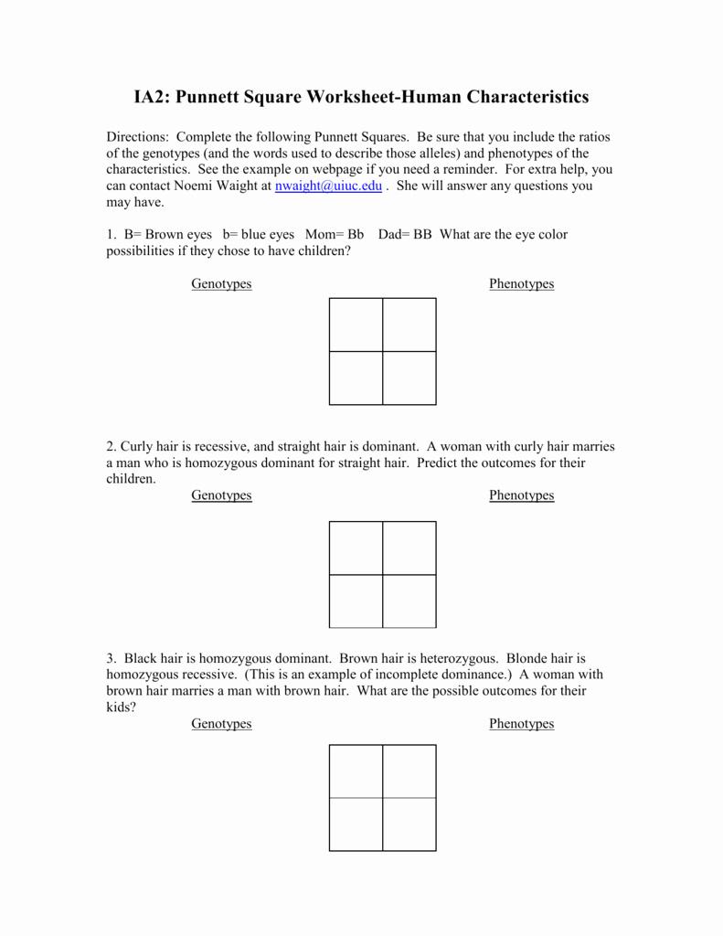 Punnett Square Practice Worksheet Inspirational Punnett Square Worksheet