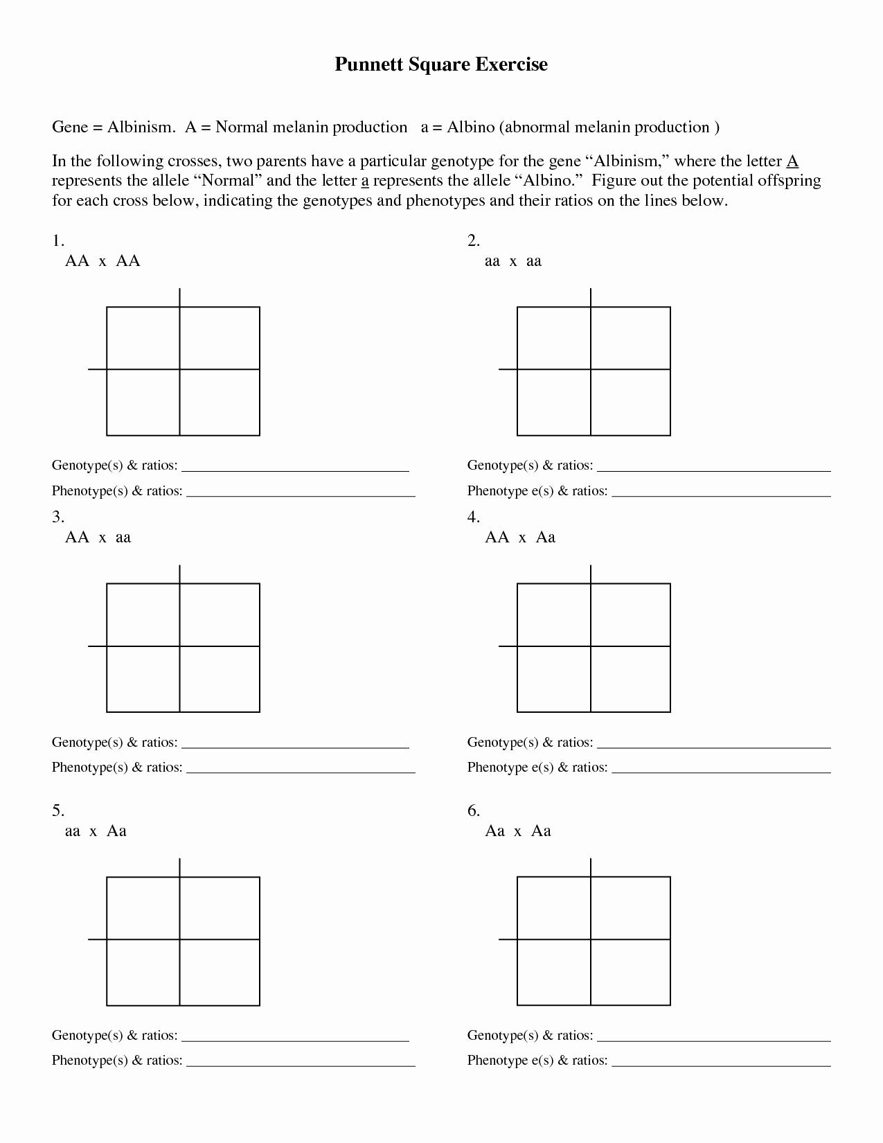 Punnett Square Practice Worksheet New 49 Punnett Square Practice Worksheet Worked Punnett