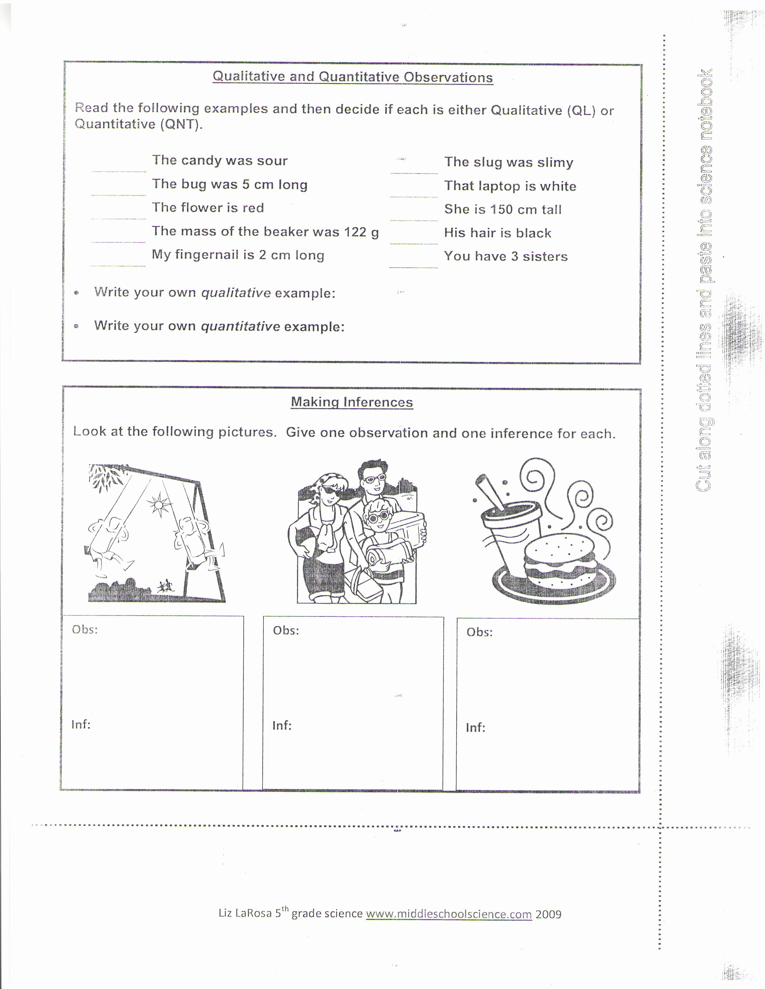 Qualitative Vs Quantitative Worksheet Luxury Qualitative and Quantitative Observations Worksheet