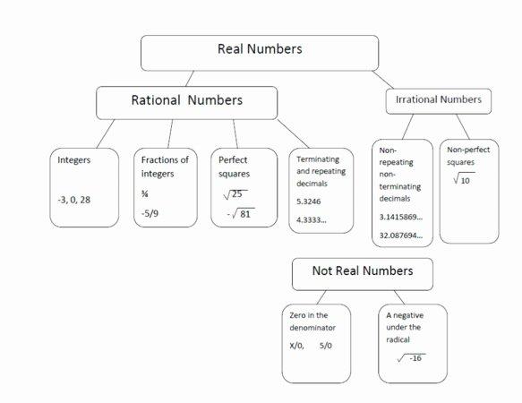 Rational Irrational Numbers Worksheet Elegant Rational and Irrational Numbers