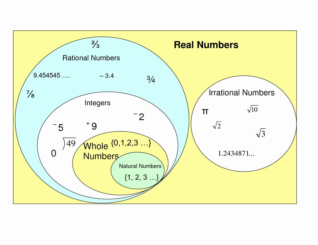 Rational Vs Irrational Numbers Worksheet Best Of Rational and Irrational Numbers Graphic organizer Google