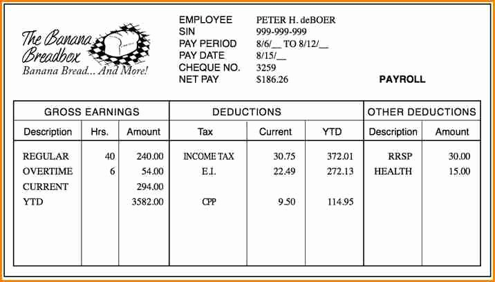 Reading A Pay Stub Worksheet New 6 How to Read Pay Stub