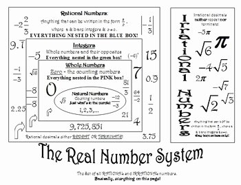 Real Number System Worksheet Unique Real Number System Notes and Worksheet by Jeri Yow