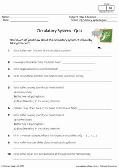 Respiratory System Worksheet Answer Key Beautiful Respiratory System Crossword Puzzle