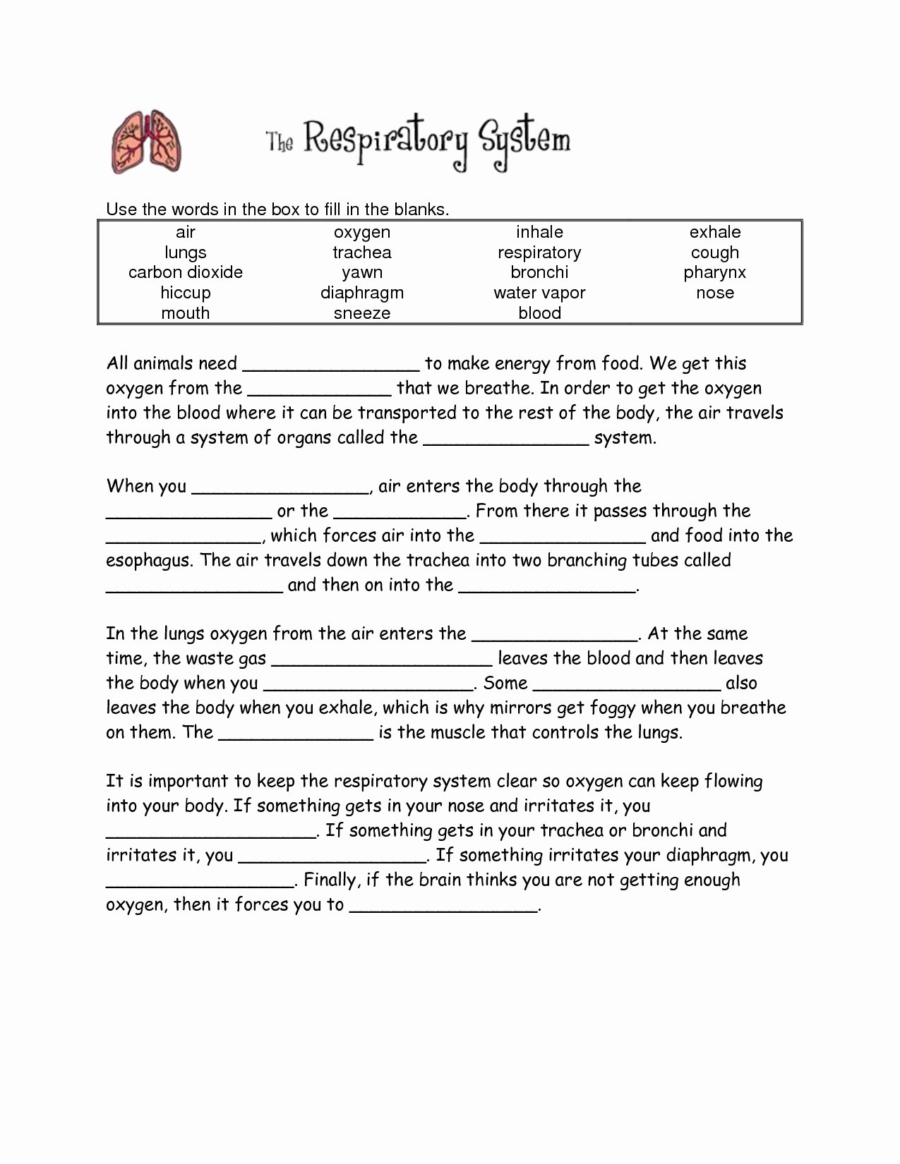Respiratory System Worksheet Pdf Elegant Respiratory System Worksheet Answer Key the Best