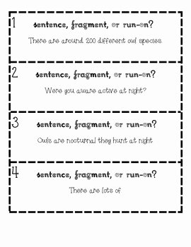 Run On Sentence Worksheet Pdf Unique Sentence Fragment or Run On Owl Facts Task Cards by