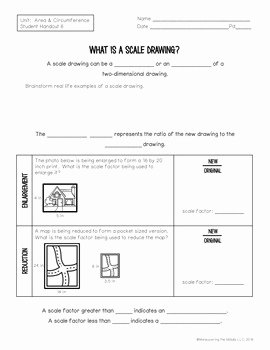 Scale Drawings Worksheet 7th Grade Best Of 7th Grade Math area Circumference Scale Drawings Unit 7