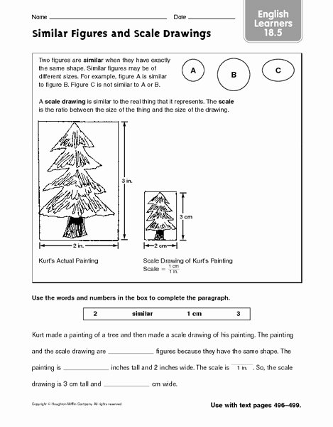 Scale Factor Worksheet 7th Grade Elegant Scale Drawing Lesson Plans & Worksheets