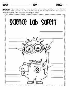 Science Lab Safety Worksheet Inspirational 25 Best Science Lab Safety Ideas On Pinterest