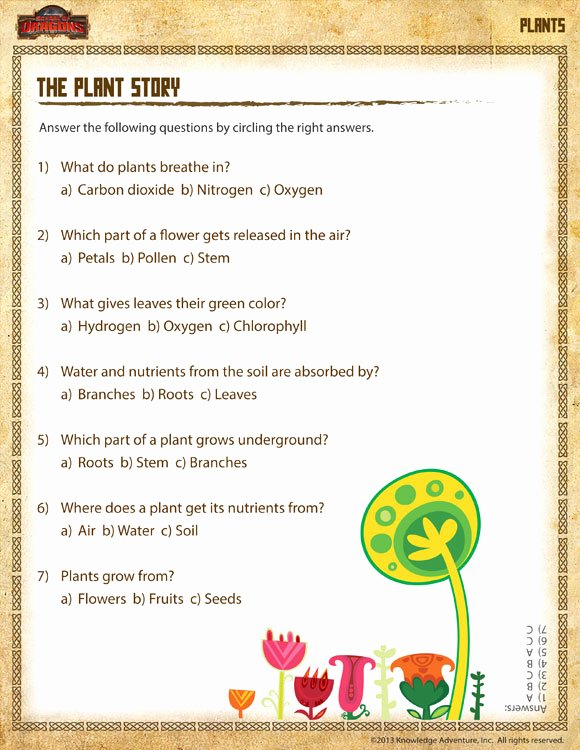 Science Worksheet for 1st Grade Awesome the Plant Story View – Printable Plant Worksheet 1st Grade